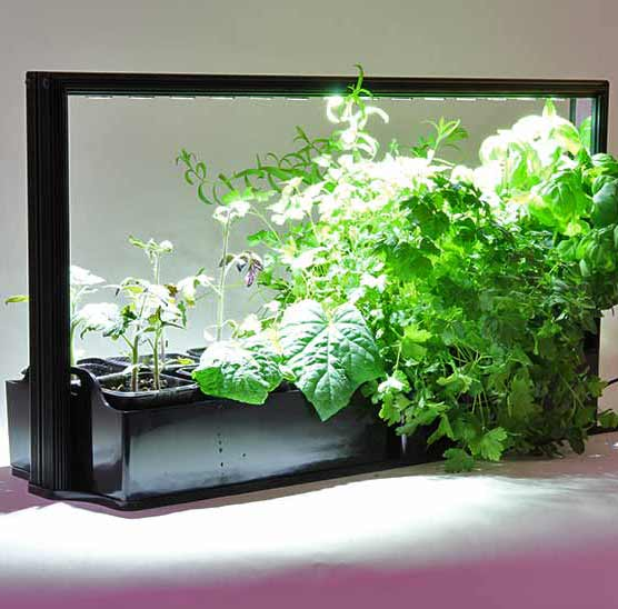 Mini Plant Factory, PMF-M20 Eco Herb Duo